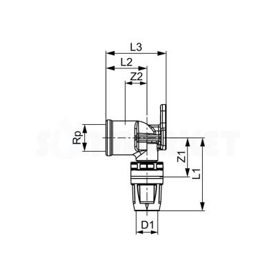"""Водорозетка для Push-fit одиночная с внутренней резьбой латунь Дн 20 х Rp 1/2"""" TECElogo"""