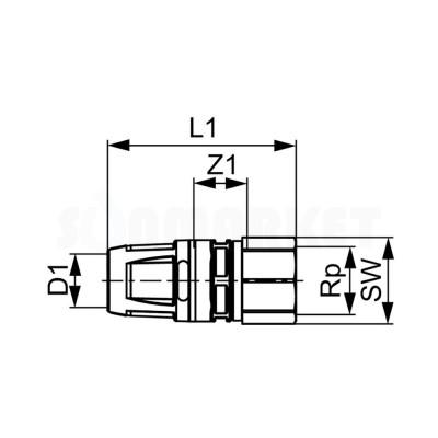"""Муфта для Push-fit переходная с внутренней резьбой бронза Дн 40 х Rp 1 1/2"""" TECElogo"""